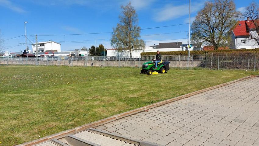 Pflegearbeiten Rasenmähen Heckenschneiden